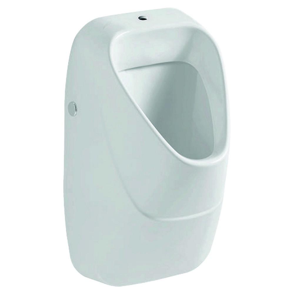Geberit 300 urinals urinoir keramisch rooster boveninlaat, wit