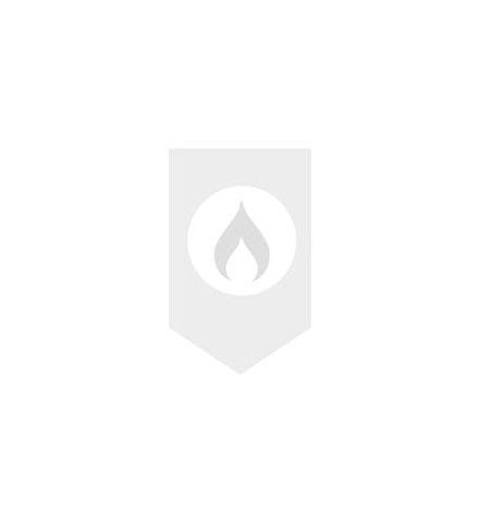 Gira Systeem 55 dubbele wandcontactdoos met randaarde en enkelvoudig vast afdekraam zonder bevestigingsklauwen, glanzend zuiver wit