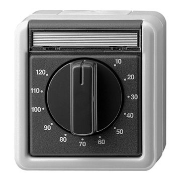 Gira opbouw tijdschakelaar spatwaterdicht 2-polig max. insteltijd 120 minuten, grijs