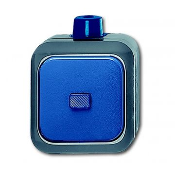 Busch-Jaeger Busch-duro 2000 WDI wipschakelaar wissel, blauw
