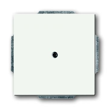 Busch-Jaeger Future Linear blindplaat met draagring, studiowit mat