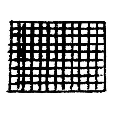 """Grundfos zuigkorf zelfaanzuigende pomp, 1"""", inclusief voetklep"""